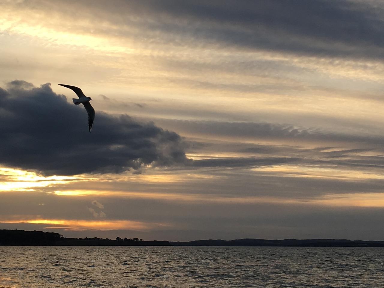 baltic-sea-2895042_1280
